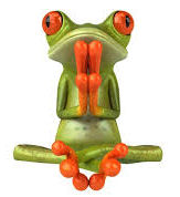 Photo of tree frog in the classic yoga lotus position.